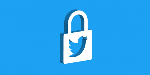 Twitter logo inside a lock icon, against a blue background.